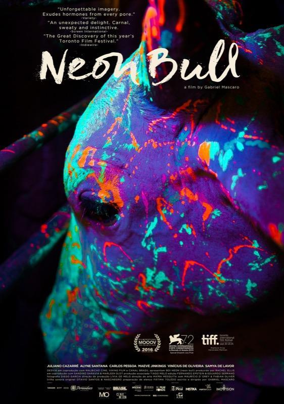 Neon Bull